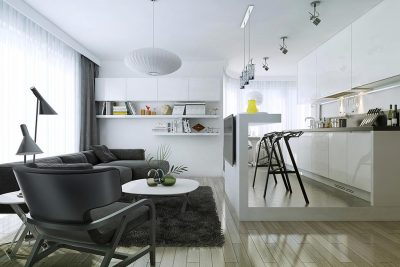 One bedroom flat living area black and white modern style interior open space